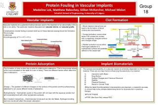 Protein Fouling in Vascular Implants
