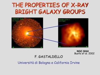 THE PROPERTIES OF X-RAY BRIGHT GALAXY GROUPS