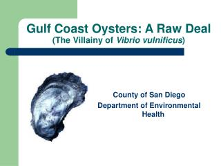 Gulf Coast Oysters: A Raw Deal (The Villainy of  Vibrio vulnificus )