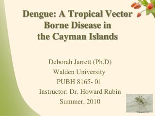 Dengue: A Tropical Vector Borne Disease in  the Cayman Islands