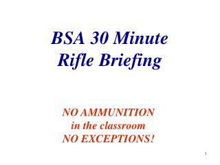 BSA 30 Minute Rifle Briefing