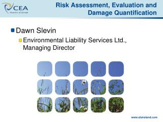 Risk Assessment , Evaluation and Damage Quantification