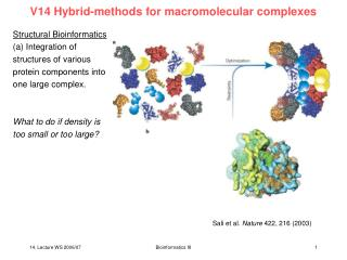 V14 Hybrid-methods for macromolecular complexes