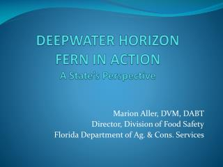 DEEPWATER HORIZON  FERN IN ACTION A State's Perspective