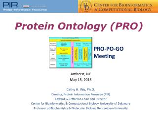 Protein Ontology (PRO)
