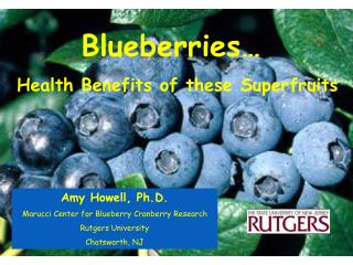 Blueberries…  Health Benefits of these Superfruits