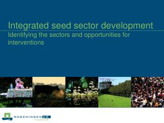 Integrated seed sector development  Identifying the sectors and opportunities for interventions