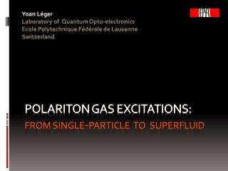 Polariton gas  excitations: from  single- particle   to   superfluid