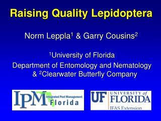 Raising Quality Lepidoptera