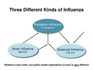 Three Different Kinds of Influenza