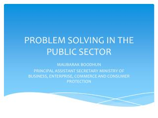 PROBLEM SOLVING IN THE PUBLIC SECTOR