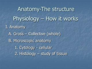 Anatomy-The structure