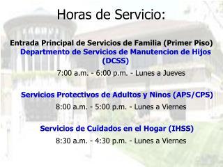 Horas de Servicio: