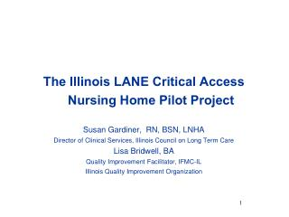 The Illinois LANE Critical Access      Nursing Home Pilot Project