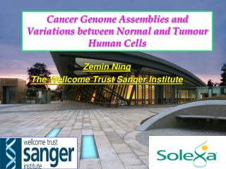 Cancer Genome Assemblies and Variations between Normal and Tumour Human Cells