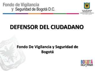 DEFENSOR DEL CIUDADANO