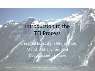 Introduction to the  TEI Process