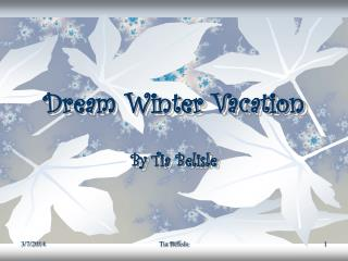 Dream Winter Vacation