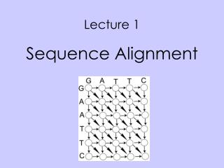 Lecture 1 Sequence Alignment