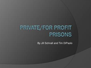 Private/for profit prisons