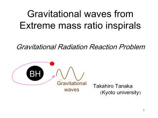Gravitational waves from Extreme mass ratio inspirals Gravitational Radiation Reaction Problem