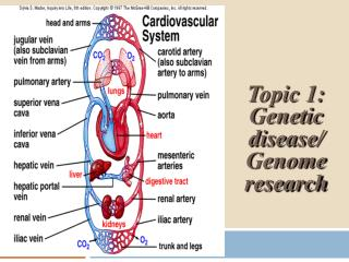 Topic 1: Genetic disease/ Genome research