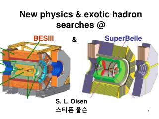 New physics & exotic hadron searches @