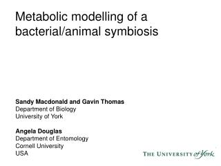 Metabolic modelling of a bacterial/animal symbiosis