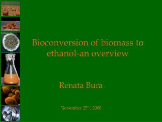 Bioconversion of biomass to ethanol-an overview