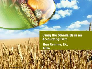 Using the Standards in an Accounting Firm
