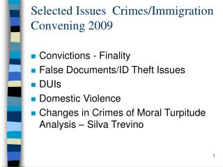 Selected Issues  Crimes/Immigration Convening 2009