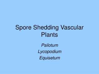 Spore Shedding Vascular Plants