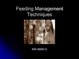 Feeding Management Techniques