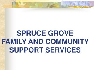 SPRUCE GROVE  FAMILY AND COMMUNITY SUPPORT SERVICES