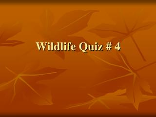 Wildlife Quiz # 4