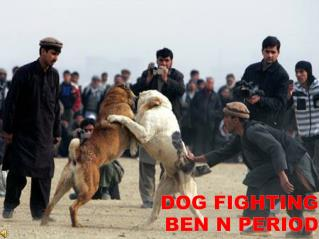 Dog Fighting Ben N period