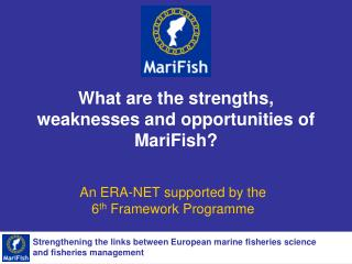 What are the strengths, weaknesses and opportunities of MariFish?
