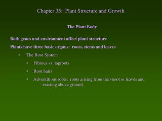 Chapter 35:  Plant Structure and Growth