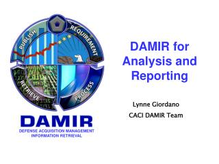 DAMIR for Analysis and Reporting