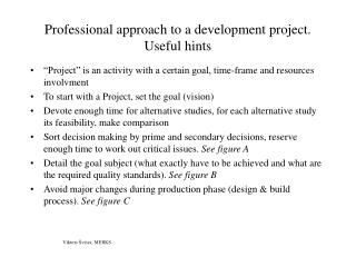 Professional approach to a development project. Useful hints