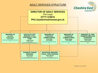 ADULT SERVICES STRUCTURE