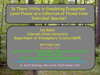 Ian Baker Colorado State University Department of Atmospheric Science/GDPE