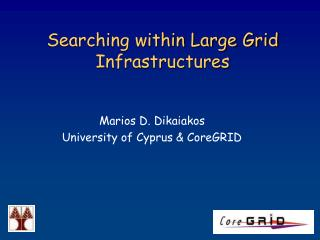 Searching within Large Grid Infrastructures