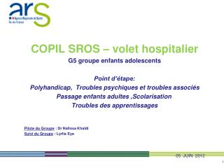 COPIL SROS – volet hospitalier G5 groupe enfants adolescents   Point d'étape: