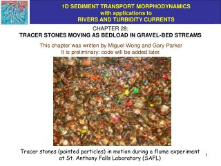 CHAPTER 28: TRACER STONES MOVING AS BEDLOAD IN GRAVEL-BED STREAMS