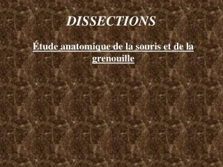 DISSECTIONS