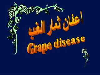 Grape disease