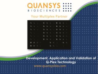 Development, Application and Validation of Q-Plex Technology
