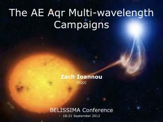 The AE Aqr Multi-wavelength Campaigns