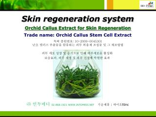 Trade name: Orchid Callus Stem Cell Extract